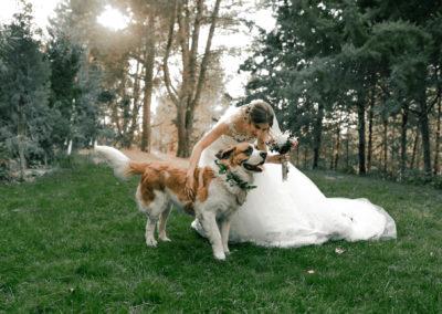 La boda de Verónica y César – Finca los 3 Corrales